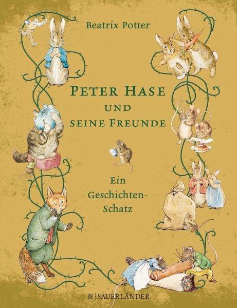 Buch Geschichten Schatz Peter Hase