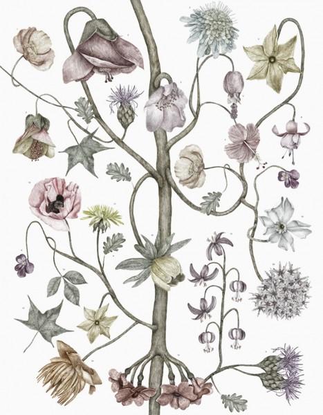 Jonna Fransson Flowers