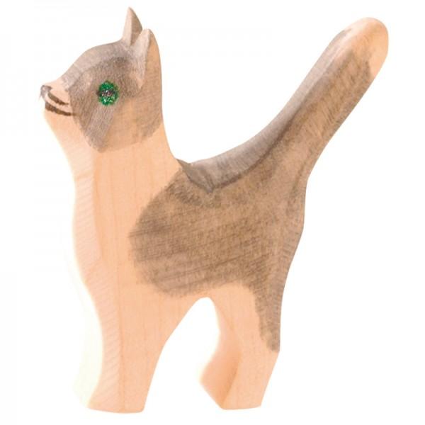 Ostheimer Katze klein Kopf hoch