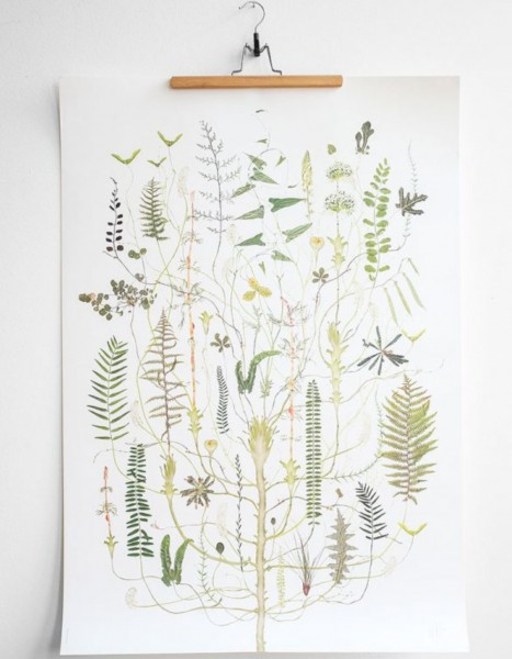 Lotta Olsson Poster Green Flora