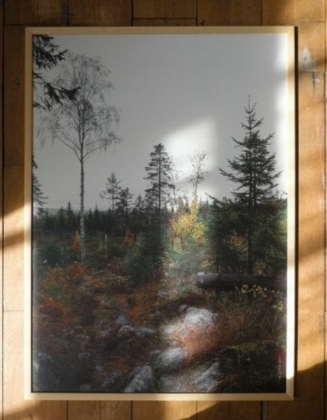 Fine little Day Poster Norrland